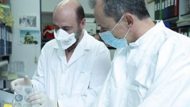 Photo of La producción de la vacuna contra el coronavirus desde Salamanca, cada vez más probable