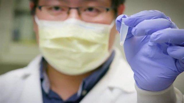 Photo of Hallan una molécula capaz de neutralizar, en modelos animales, al coronavirus