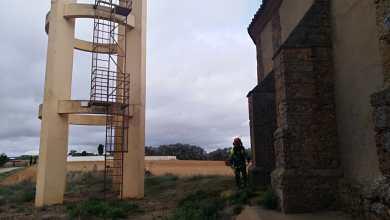 Photo of Trabajadores del Plan Forestal de Junta y Diputación intervienen en Matilla de Arzón en prevención de incendios