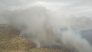 Photo of Villalcampo sufre un incendio de nivel 1 desde este mediodía en el que interviene un amplio operativo