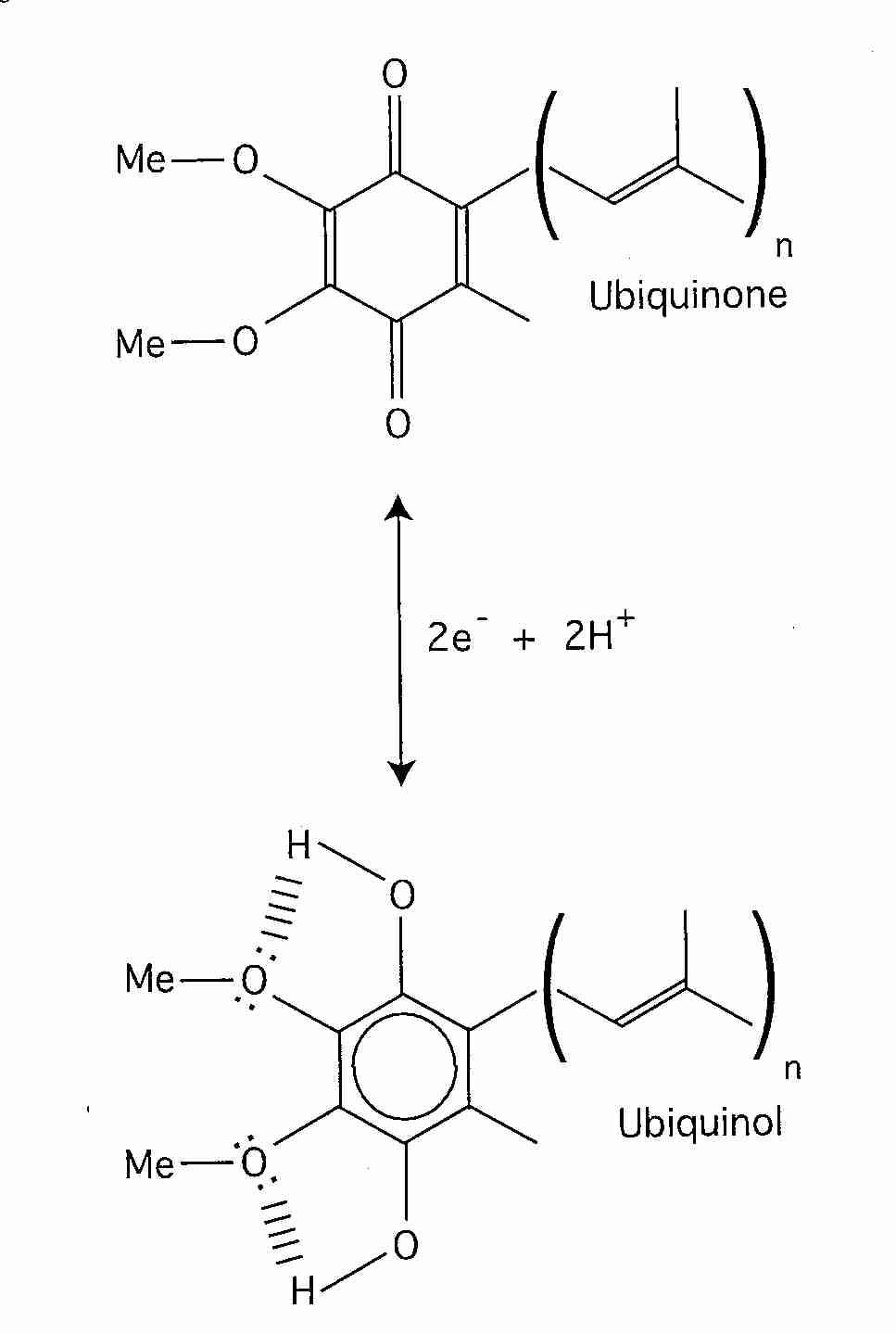 hight resolution of coq10 redox reduction oxidation