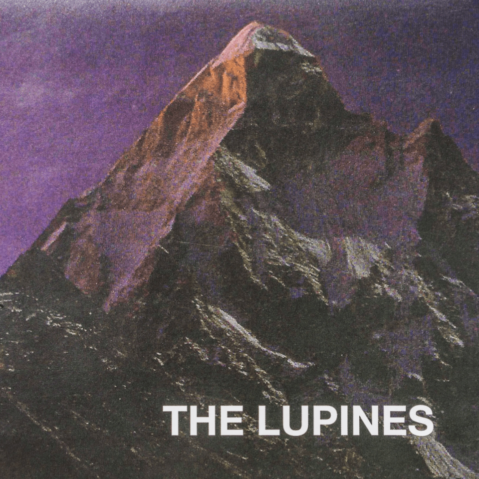 <u><b>The Lupines - Mountain of<br>Love</u></b><br><i>(2017, Self)</i><br><small>recording and mix engineer</small>