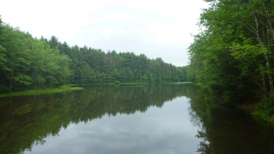 two ponds picture ponoco