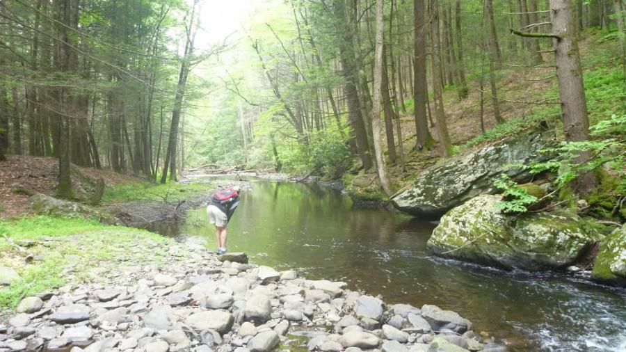 hiking trail image