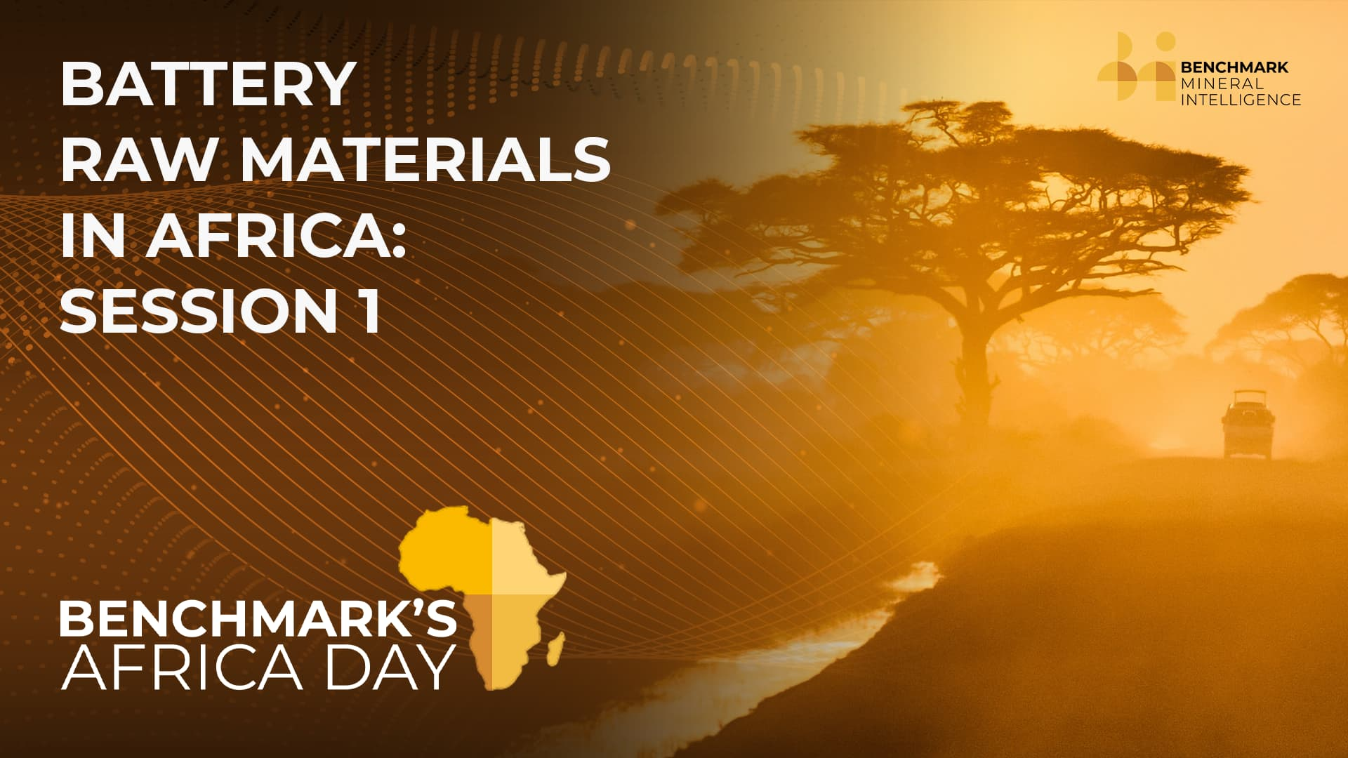 Battery Raw Materials in Africa: Session 1