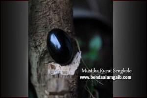 Produk Spiritual - Mustika Rucat Sengkolo