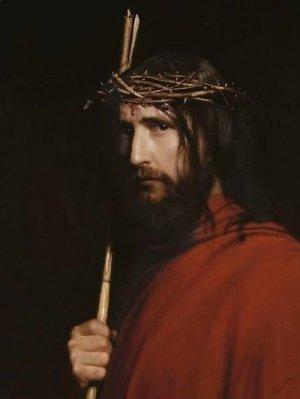 Christ Thorns