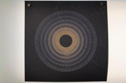 Evolution and ecology: spiral set no. 5 (part 3), 2016, 20x20cm 445nm laser on paper.