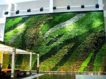 living wall in NYC