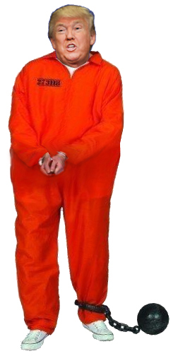 Image result for trump orange jumpsuit