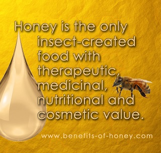 honey bee facts image