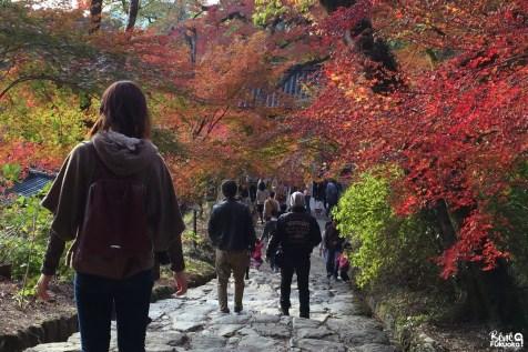 Temple Nissho-in, Akizuki, Fukuoka