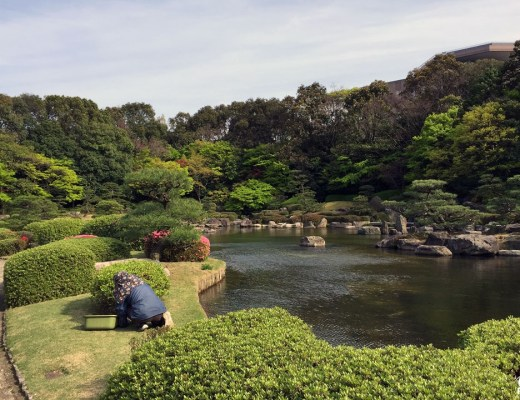 Le jardin japonais du parc Ôhori