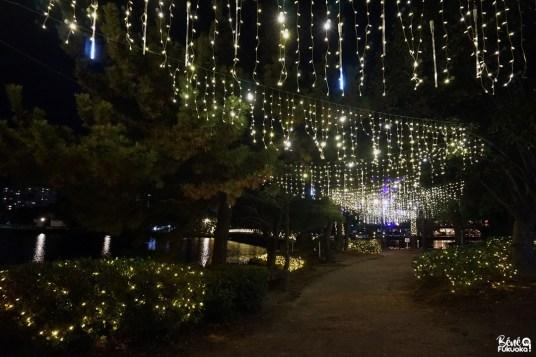 Les illuminations du parc Ôhori, Fukuoka