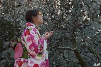 kimono-parfum-pruniers
