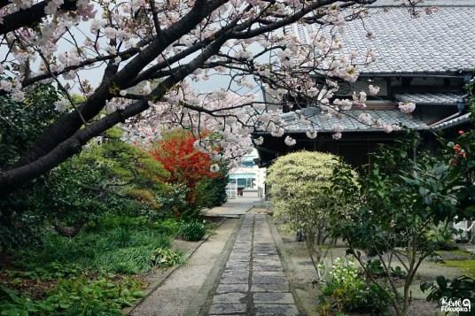 Le temple Junshin-ji,Fukuoka