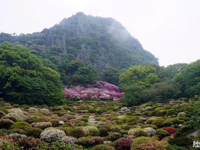 J'ai visité le jardin Mifuneyama Rakuen
