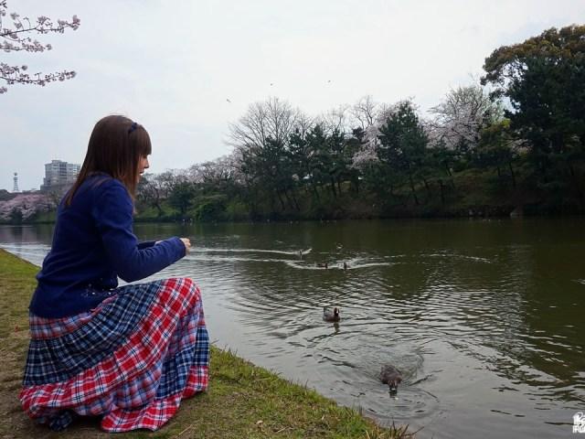 4 ans au Japon : quand la routine s'installe