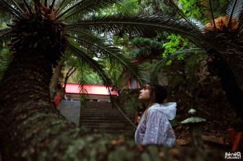 Au sanctuaire Misaki, Minami-Ôsumi