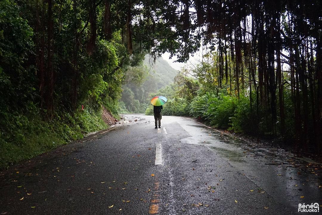 Parapluie multicolore, Minami-Ôsumi, Kagoshima