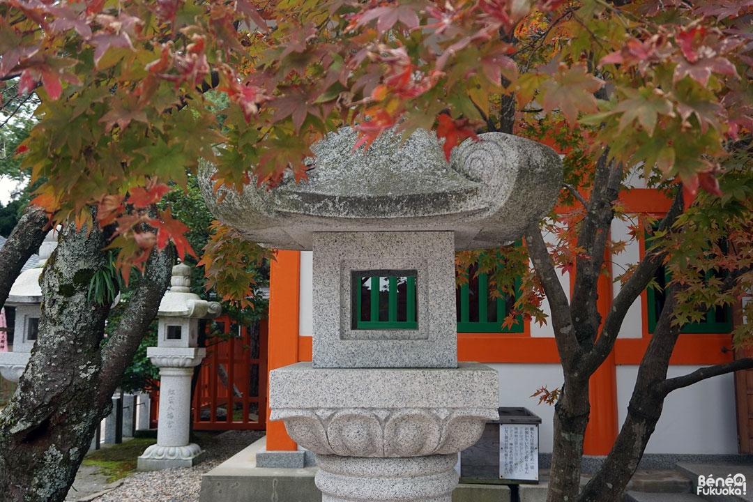 Lanterne japonaise et momiji, sanctuaire Momiji Hachimangû, Fukuoka