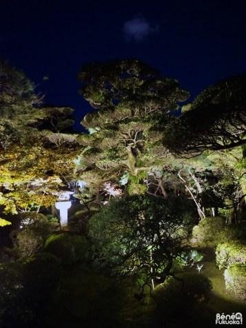 Temple Engaku-ji, Hakata Light Up Walk, Fukuoka