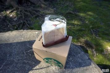 SAKURA chiffon cake, Starbucks