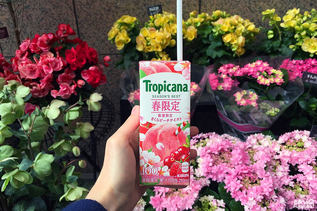 Boisson Tropicana goût cerisier
