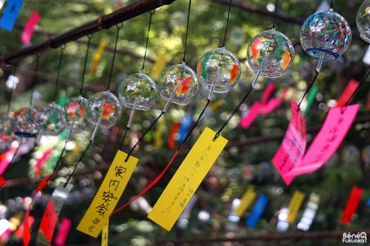Fûrin festival, Nyoirin-ji (Kaeru-dera), Fukuoka