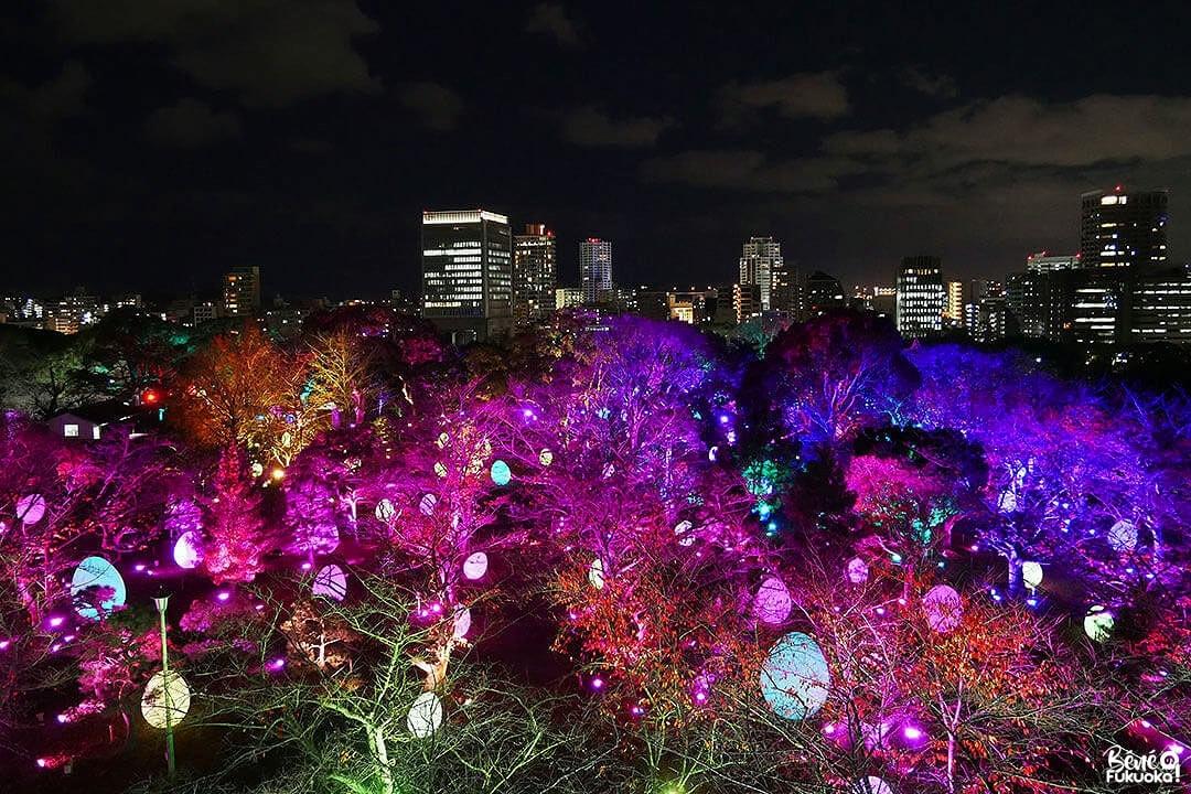 teamLab: Light Festival in Fukuoka Castle Ruins