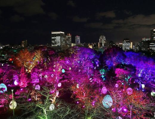 teamLab: Light Festival in Fukuoka Castle Ruins