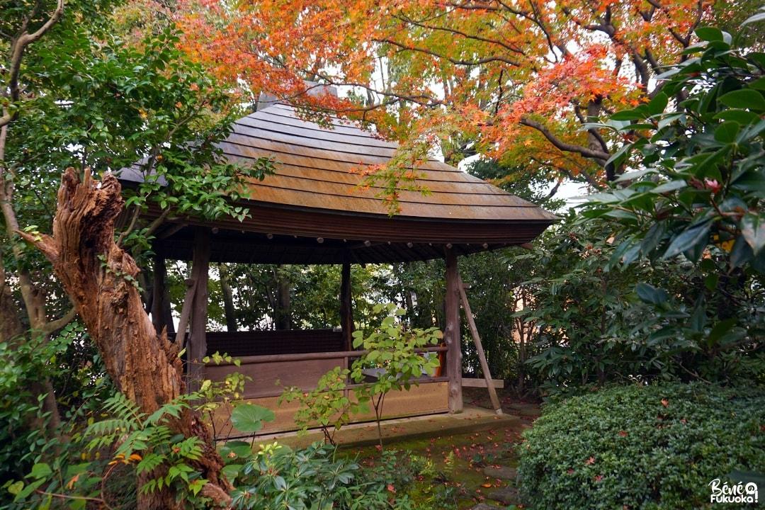 Érables au jardin Shôfû-en de Fukuoka