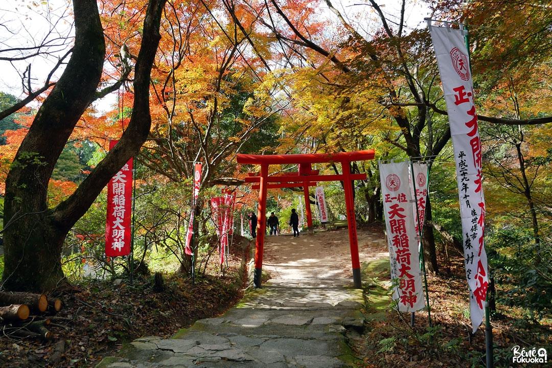 Les érables rouges à Dazaifu en automne