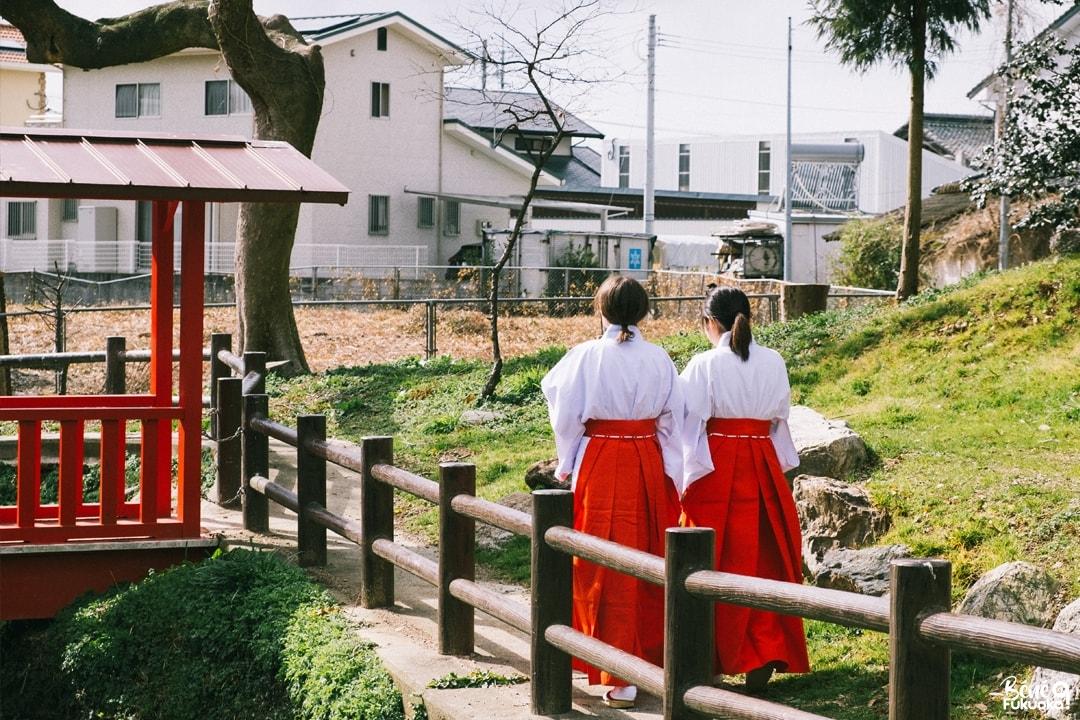 Experience miko au sanctuaire Koinoki, ville de Chikugo, Fukuoka