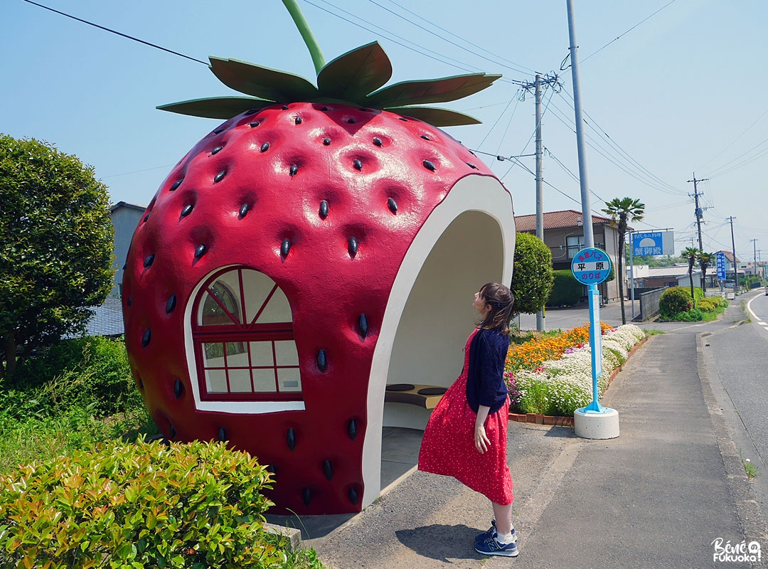 Les arrêts de bus fruits de Konagai (Nagasaki)