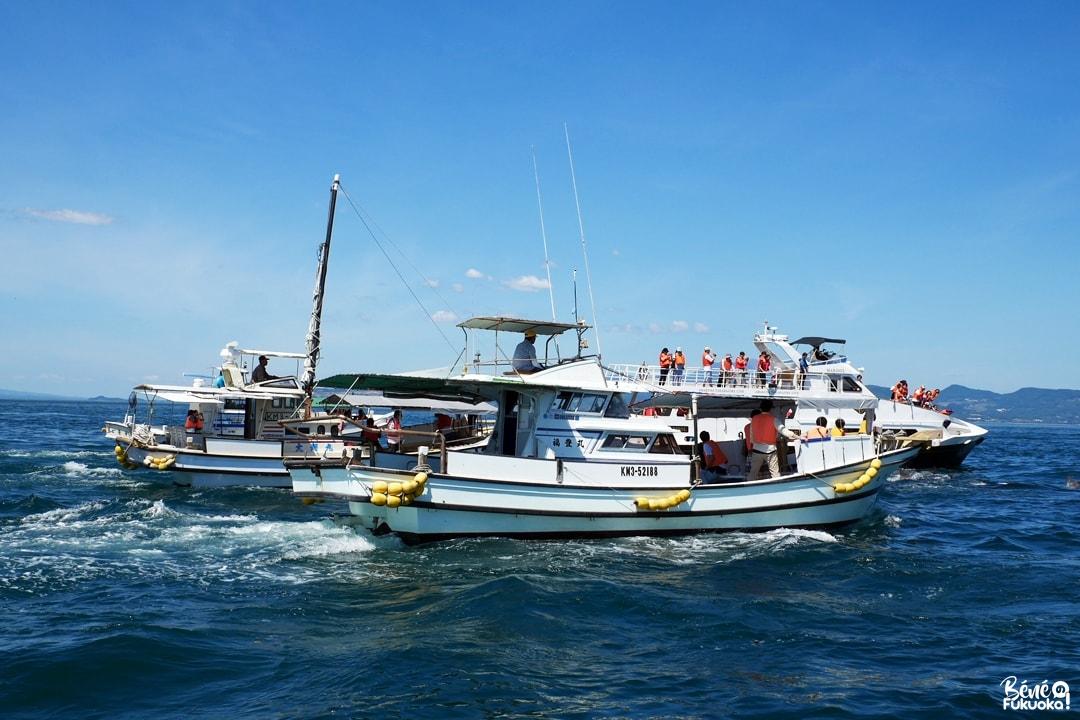 Les bateaux de croisière de dauphins; Amakusa, Kumamoto