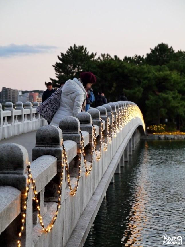 Les illuminations d'hiver du parc Ôhori, Fukuoka