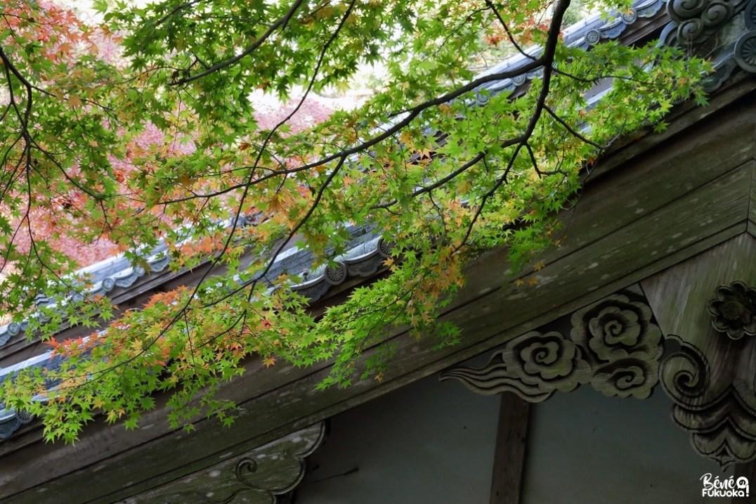 Momiji au temple Raizan Sennyoji Daihiô-in, ville d'Itoshima, Fukuoka