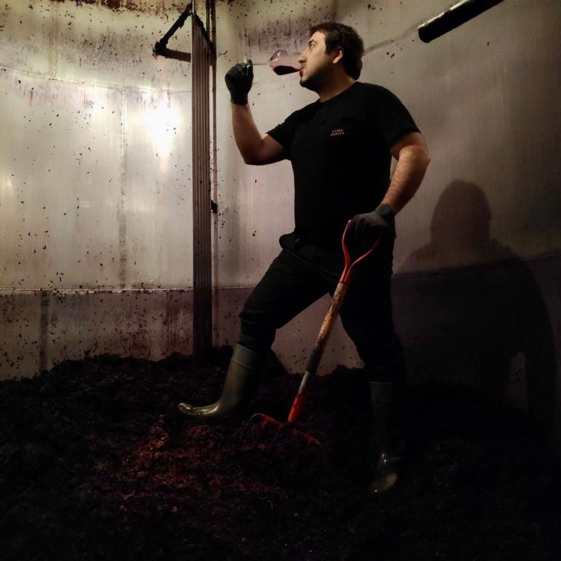 Catando vino dentro del deposito