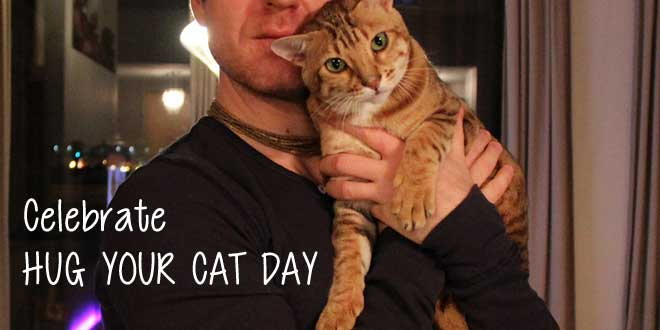 June 4th Is National Hug Your Cat Day