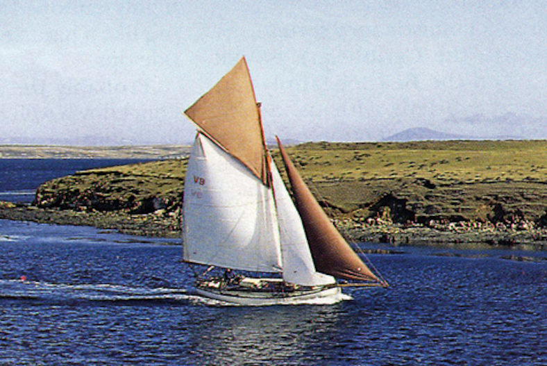 curlew full sail