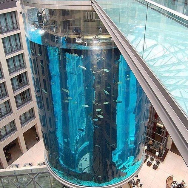 Luxury and Modern Buildings 49