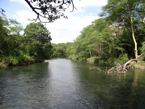 the w national park, of Benin republic