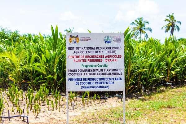 amenagement-de-la-zone-balneaire-:-les-pepinieres-de-production-de-plants-de-cocotiers-a-seme-podji-accueillent-les-ministres-dossouhoui-et-tonato
