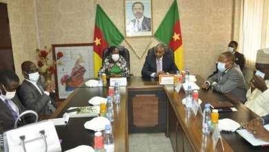 Photo of Conseil d'Administration de l'Organisation Africaine de la Propriété Intellectuelle : La Ministre Alimatou Shadiya ASSOUMAN en visite de travail à Yaoundé