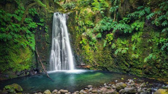 Warum Wasserfälle gut für dein Immunsystem sind!