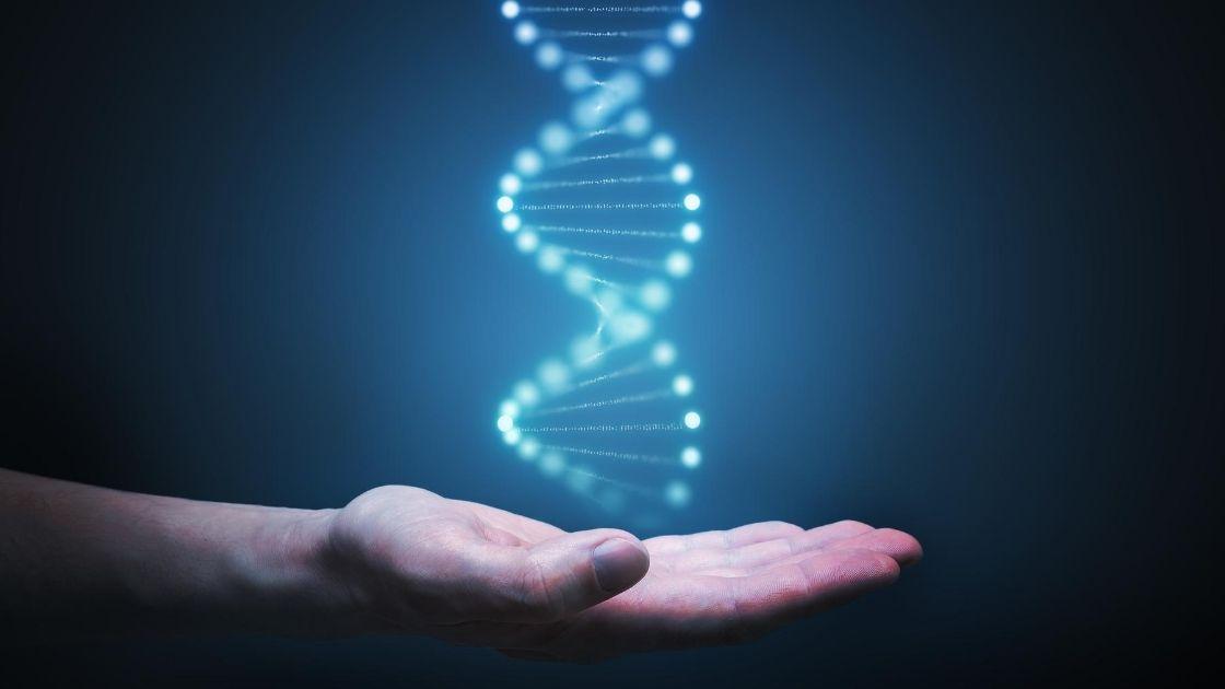 DNA Test – Hacke deine Gesundheit