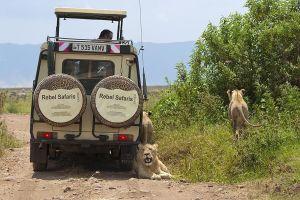 AFO-Benny-Rebel-Fotoreise-Tansania-Ngorongoro-Tourismus