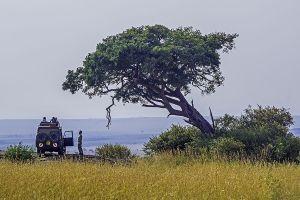 AFV-Benny-Rebel-Fotoreise-Kenia-Tourismus