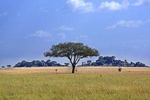 AKaBenny-Rebel-Fotoreise-Tansania